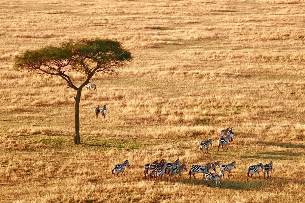 Partir en voyage Tanzanie
