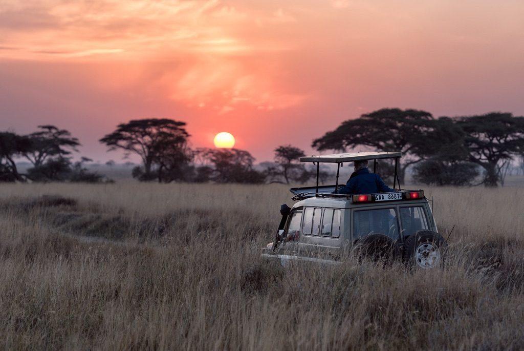 Préparer Safari en Afrique